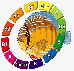 Какая рыба способствует похудению
